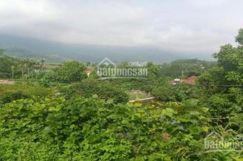 Cần bán 2500m2 làm nhà vườn nghỉ dưỡng ở Tiến Xuân, Thạch Thất