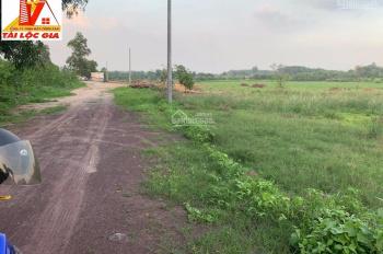 Bán 7300m2 đất ở Phước Tân, Biên Hòa, đường Võ Nguyên Giáp, SHR, ngang 70m chính chủ đường 8m