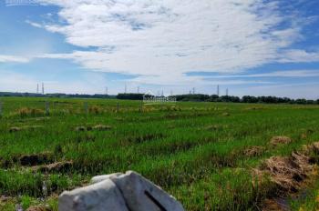 Cần bán lô đất CỰC RẺ 2200m giá 700 triệu, Trung Lập Hạ, Củ Chi