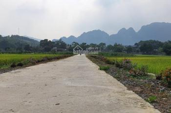 Gia đình cần tiền nhờ bán gấp lô đất rừng sản xuất có DT 3,2ha, tức 32.000m2 lô đất, Lương Sơn