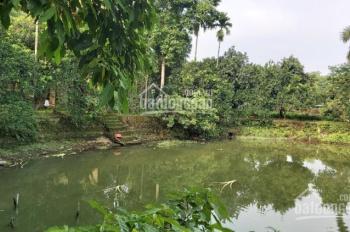 Bán nhà Lương Sơn Hòa Bình 4000m2 khuôn viên hoàn thiện đẹp rẻ, có bể bơi, ao cá cách HN 45p lái xe