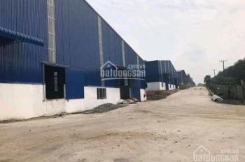 Cho thuê nhà xưởng khu công nghiệp Sóng Thần 2, giá rẻ đầu tư