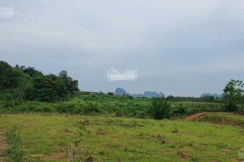 Bán đất thổ cư Lương Sơn, Hòa Bình. DT 5800m2 rẻ như cho