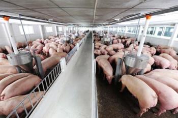 Bán trang trại lạnh, công nghệ cao, DT 10ha, XD 8 ha đang cho thuê 500 triệu/tháng