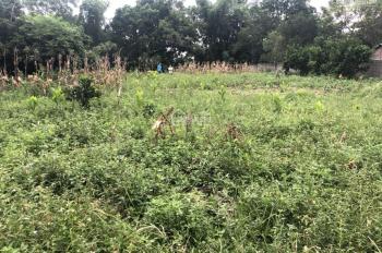 Bán gấp 1001m2 bám đường bê tông trước mặt có ao to tại Nhuận Trạch, Lương Sơn, Hoà Bình
