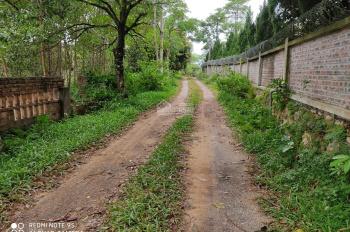 Bán gấp lô đất thổ cư tại xã Cư yên - Lương Sơn, dt 1580m2 liên hệ 0984538309