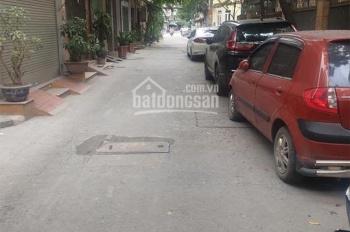 Mua ngay đất Chỉ Đạo - Văn Lâm Hưng Yên 70m2 đường ô tô cách KCN Minh Hải 300m, LH 0368919919