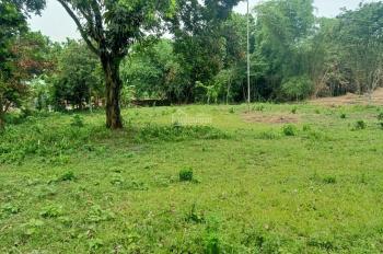 Cần chuyển nhượng lô đất 3350m2 làm biệt thự nhà vườn, giá rẻ nhất tại Cư Yên, Lương Sơn, Hòa Bình