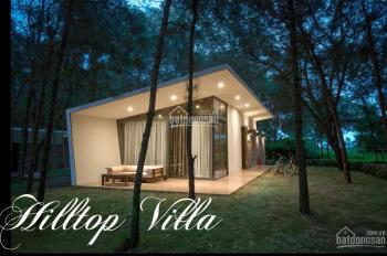 Biệt thự Hilltop Villa - Flamingo Đại Lải sổ đỏ lâu dài 140m2, chìa khóa trao tay, giá TT 2,8 tỷ