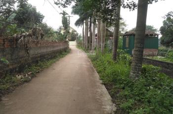 Bán 720m2 trung tâm thôn Sen Trì, xã Bình Yên, h. THạch Thất, TP. Hà Nội