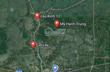 Bán đất nền khu dân cư Mỹ Phước Tây, Thị Xã Cai Lậy, Tỉnh Tiền Giang