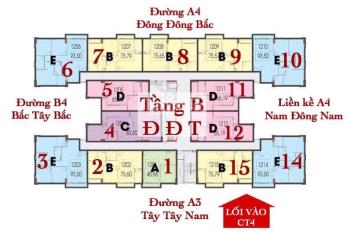 Bán căn hộ CT4 Phước Hải cam kết giá rẻ nhất thị trường. Tư vấn pháp lý, thiết kế căn hộ