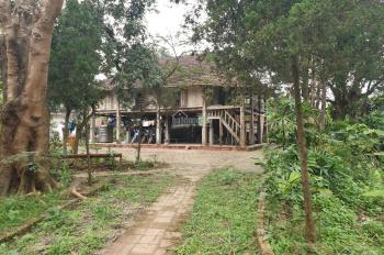 Chuyển nhượng khuôn viên nhà vườn 5900m2 Lương Sơn, Hòa Bình