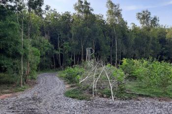 Chủ cần ra nhanh lô đất xã Long An, DT 1000m2, cam kết giá rẻ hơn khu vực, LH 0943468316