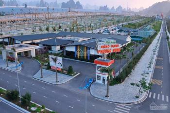 Độc quyền quỹ hàng đất nền Phương Đông Vân Đồn, sổ đỏ, giá chỉ từ 22 triệu/m2, hỗ trợ 0%LS 2 năm