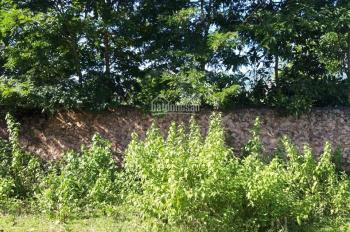 Bán gấp 2150m2 đất Nhuận Trạch - Lương Sơn - HB, vuông góc, phẳng lỳ, làm nhà xưởng được