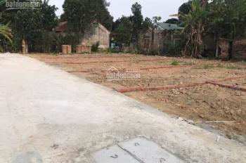Chính chủ cần tiền bán lỗ mảnh đất 87.5m2 Tổ Dân Phố Cơ Quan - Gia Khánh - Bình Xuyên