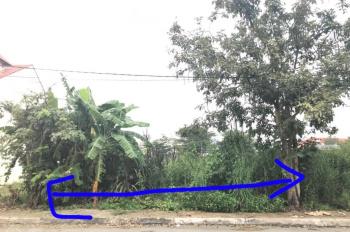 Chính chủ bán đất biệt thự 240m2 P7 Quận 8 Phạm Thế Hiển, khu Hai Thành mặt sông siêu đẹp