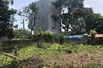 Chính chủ cần bán gấp 63.6m2 (4x15.9m) đất thổ cư tại xóm 1 thôn Nội Am, Xã Liên Ninh, Thanh Trì