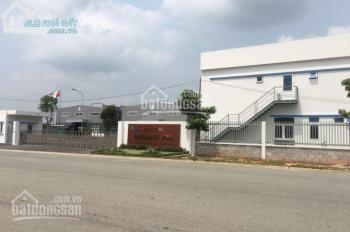 Cần bán đất nền đối diện KCN Bàu Bàng, 200m2, giá 400tr, tc, SHR.