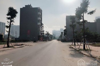 Chuyên mua bán đất dịch vụ Vạn Phúc 50m2 dãy NO6 NO7 NO10 NO11 đường 15m sổ đỏ, tự xây 7 tầng