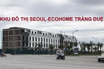 Chủ đầu tư thanh lý một số lô đất đẹp KĐT Seoul Eco Homes - Tràng Duệ