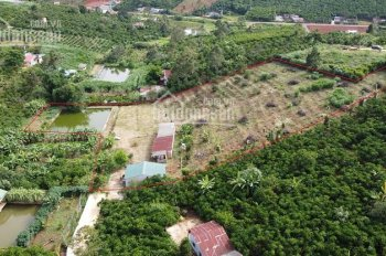 7400m2 đất nghỉ dưỡng ngay trung tâm TP Bảo Lộc, trên đất có ao, cây ăn trái, view toàn cảnh đẹp