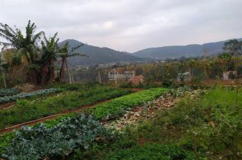 Chính chủ bán đất thổ cư, có sổ hồng riêng phù hợp xây dựng nhà ở gia đình - thị trấn Liên Nghĩa