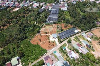 6700m2 đất nghỉ dưỡng tuyệt đẹp gần trung tâm TP Bảo Lộc, cách QL 20 chỉ 500m