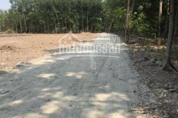 An Bình, Phú Giáo, DT 10x50m TC 100m, mặt tiền đường nhựa 5m, sổ riêng, giá đầu tư 720 triệu