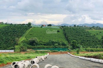 Bán đất Đambri, Bảo Lộc, Lâm Đồng. LH 0798179411