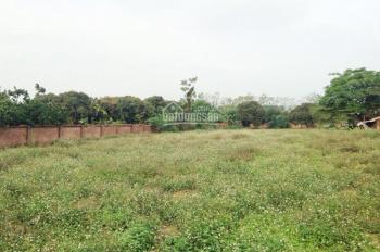 Gia đình cần bán gấp mảnh đất La Phù - Huyện Hoài Đức giá 650 triệu, DT 90m2, MT 7,2m