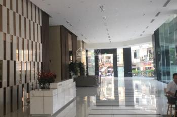Cho thuê văn phòng tòa Discovery Complex - 302 Cầu Giấy, Diện tích 100m2-300m-500m-1000m2, giá RẺ