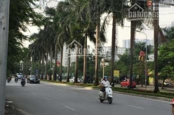 Cho thuê cả tòa nhà mặt phố Lê Đức Thọ, diện tích 115 m2 x 7 tầng, vị trí đắc địa