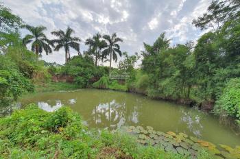 Bán gấp 9.575m2 đất thổ cư có 02 ao cá nước nước quanh năm tại Lương Sơn, Hòa Bình