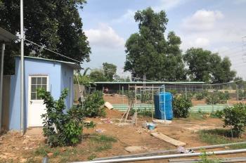Cần bán vườn bưởi kèm mô hình resort nghỉ dưỡng, Vĩnh Cửu, cách Biên Hoà 8km