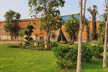 Đừng bỏ lỡ cơ hội đầu tư đất nền sổ đỏ mặt tiền Quách Điêu, Bình Chánh giá rẻ - PKD 0909138006
