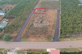 Bán lô đất nghỉ dưỡng tuyệt đẹp hẻm Phan Đình Phùng, gần trung tâm TP Bảo Lộc, diện tích 11x24m