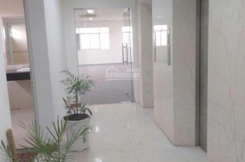Cho thuê tòa nhà chính chủ, MT đường Trường Sơn, khu sân bay P. 2, Tân Bình 1T10L Hầm, 13x24m