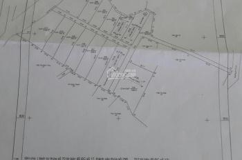 Bán 1,4ha đất vườn trồng dừa, có 400m2 thổ cư và nhà yến tại Phú Quốc, đã tách thửa từng sổ riêng.
