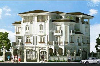 Rổ hàng còn 5 căn biệt thự Cityland Riverside, DT 200m2, 340m2, hướng nam, giá 23 tỷ, liền kề PMH