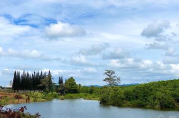 Cần bán đất Hồ Lộc Thanh 1900m2 giá chỉ 2.65 tỷ