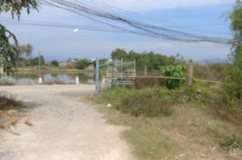 Bán đất đường Liên Hoa Xã Vĩnh Ngọc cách sông chỉ 20m giá 1 tỷ 200 diện tích 99m2 ngang 7m