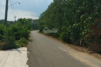 Đất mặt tiền đường nhựa Liên Xã, Thanh Bình, Trảng Bom, 5x29m, chỉ 195 triệu, 100%