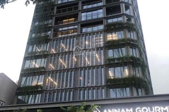 Nguyên tòa Building cho thuê MT Nguyễn Bỉnh Khiêm Q1 12x33m. Hầm 8 tầng - 300 triệu/tháng