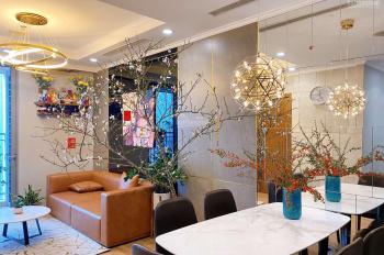 Hot bán căn hộ đập thông Park DT 206 m2, Hai Bà Trưng, giá 14,5 tỷ bao phí, Lh 097 970 2442