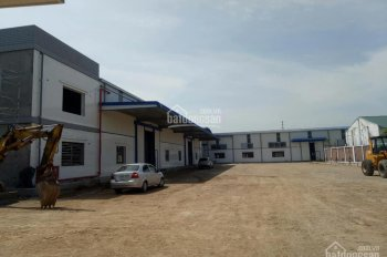 Cho thuê xưởng mới dựng tiêu chuẩn ven Quốc Lộ 5, tại Kim Thành - Hải Dương