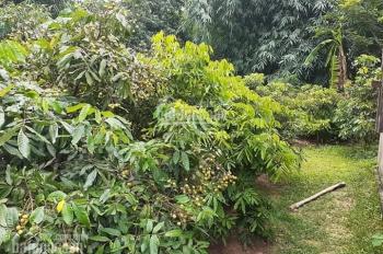 Bán nhà đất nhà vườn Bắc Giang giá rẻ 0928799868