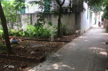 Bán 44.5m2 đất xóm 2 Hải Bối, Đông Anh, Hà Nội, giá cho này đầu tư
