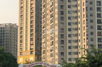 Cần bán gấp biệt thự Hoa Phượng, Xã An Khánh, Hoài Đức, Hà Nội